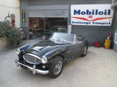 AUSTIN HEALEY 3000 ROADSTER occasion